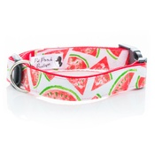 Pet Pooch Boutique - Watermelon White Collar
