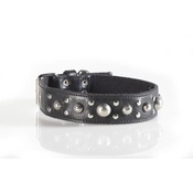 Kara Van Petrol - Fashion Dog Collar with Disco Ball Studding in Black