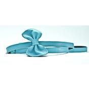 SR! Dog Accessories - Blue Dog Leash