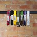 Pawditch Yellow Dog Collar, Lead & Coat Set  6