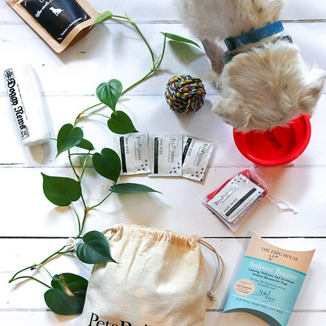 Canine Traveller Kit