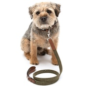 Mutts & Hounds - Forest Green Tweed & Tan Leather Lead