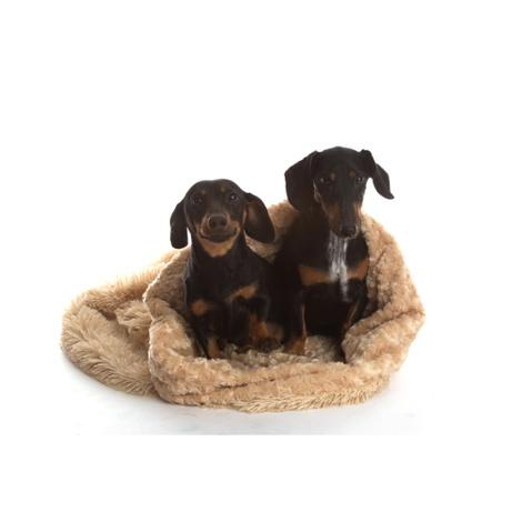 Pooch Pod Dog Bed - Camel