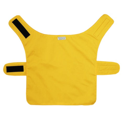 Pawditch Yellow Dog Coat 3