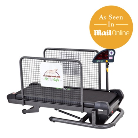 Small Treadmill for Dogs 3