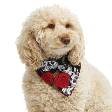 Skulls & Roses Dog Bandana
