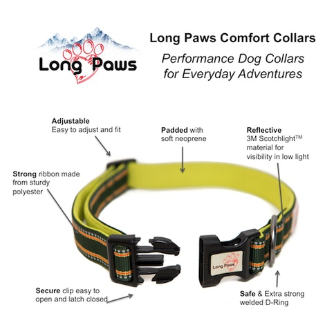 Comfort Padded Dog Collar – Green 3