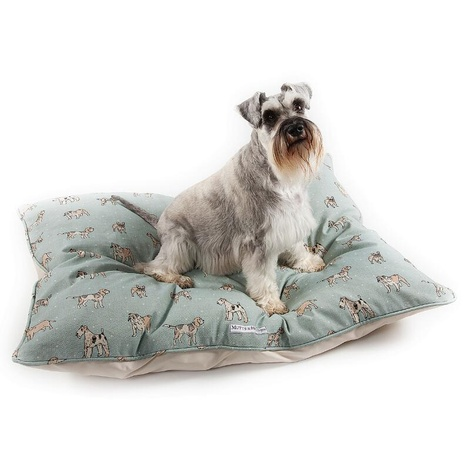 Dog Print Duck Egg Pillow Bed