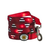 PetsGlow - Striped Hearts LED Dog Lead
