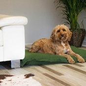 Ralph & Co - Stonewashed fabric cushion bed - Richmond