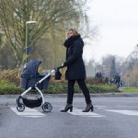 Cleo Denim Pet Buggy 8