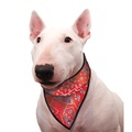 Dog Cooling Bandana in Red Western