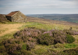 Ingleby Barn, Yorkshire 2