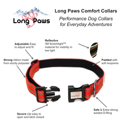 Comfort Padded Dog Collar – Orange 4