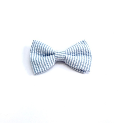 Collar and Bow Tie - Putney 2
