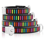 Cool Dog Club - Cool Dog K9 Striker MK2 Technicolour Dog Collar
