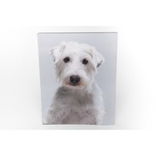 PetsPyjamas - Personalised Wooden Photo
