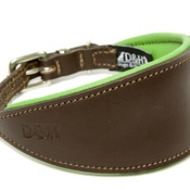 PetsPyjamas - Green Leather Padded Hound Collar