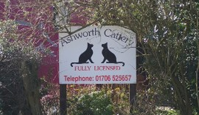Ashworth Cattery 2
