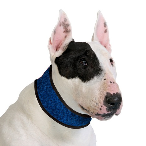 Dog Cooling Collar in Pacific Blue