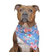 Pet Pooch Boutique - Navy Vintage Dog Bandana