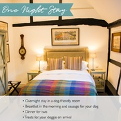 PetsPyjamas - Merry Harriers Exclusive One Night Stay Voucher