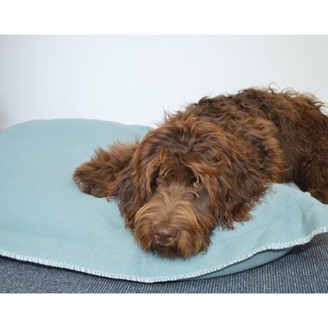 Kudos Kingston Knife Edge Pet Cushion in Duck Egg Blue 2