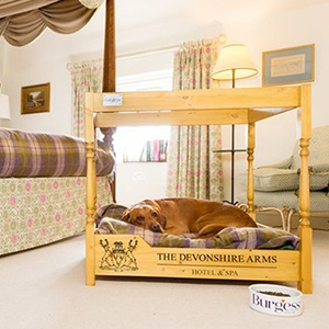 <strong>THE DEVONSHIRE ARMS HOTEL & SPA, NORTH YORKSHIRE:</strong> Super dog-friendly package including blankets, bedding, bowls as well as a doggie four-poster bed.