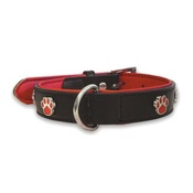 The Paws Pet Supplies - Charm Black Collar - Paws