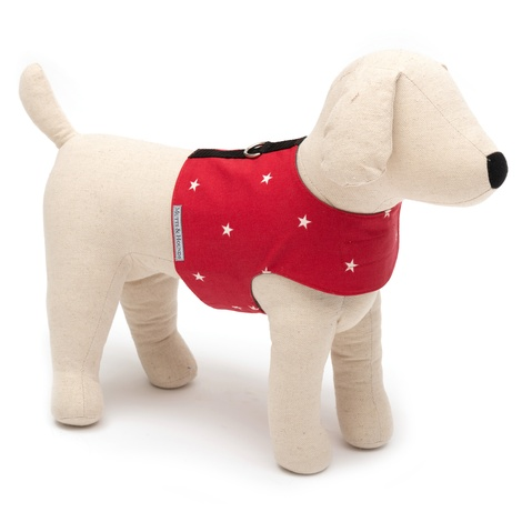 Cranberry Star Cotton Harness 3