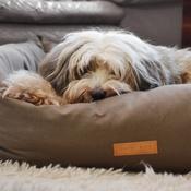 Ralph & Co - Stonewashed Fabric Nest Bed - Hammersmith