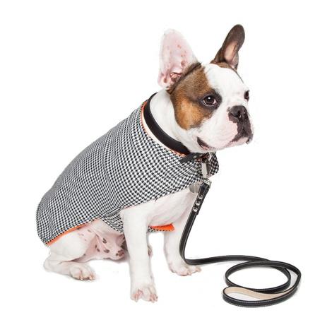 Personalised Houndstooth Dog Coat 3