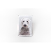 PetsPyjamas - Personalised Pet Magnet