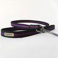 Purple Dog Lead 3