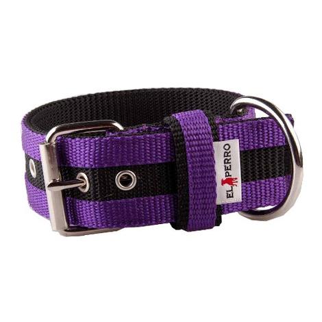 Juicy Strip Dog Collar - Purple