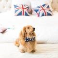 Teddy Maximus Navy Dog Bow Tie 2