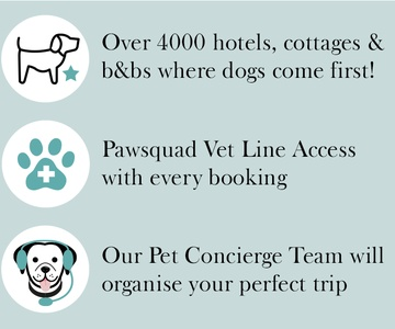 Reasons to book with PetsPyjamas