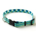 Blue/Green Striped Argyle Collar