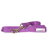 Doodlebone - Bold Dog Lead – Purple