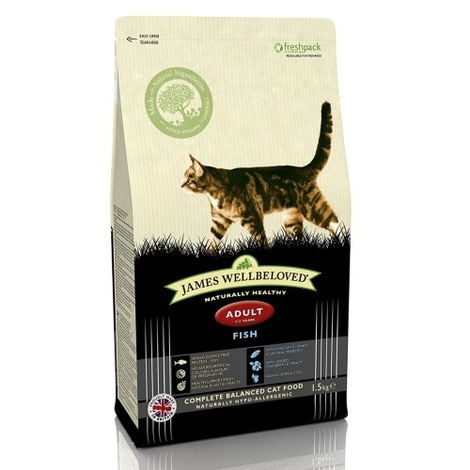 Fish & Rice Adult Dry Food Cat Food