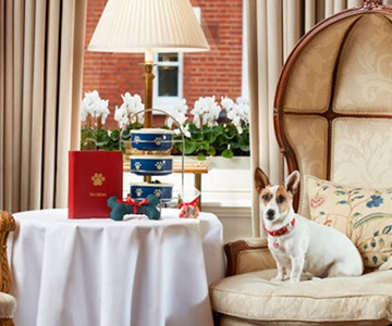Barking Britain Hotel Packages