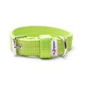 Double Dog Collar – Neon Green