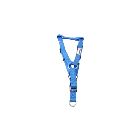 Bold Range Harness - Royal Blue