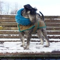 Chunky Funky Snood Scarf - Teal  2