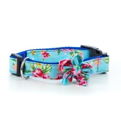 Pet Pooch Boutique - Blue Vintage Collar with Flower Accessory