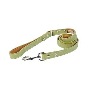 Tuscany Leather Dog Lead – Green