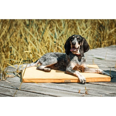 Honey Foam Dog Mat 3