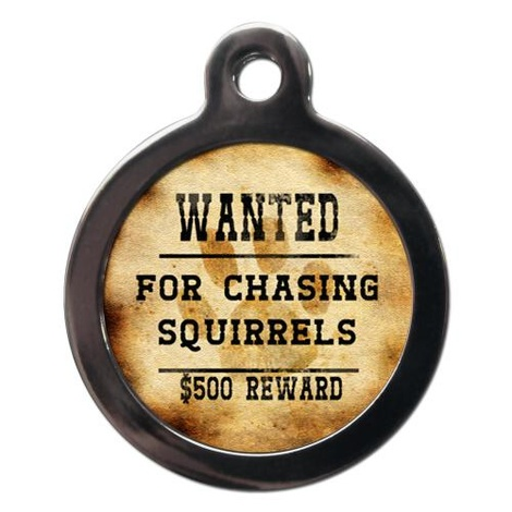 Wanted For Chasing Squirrels Pet ID Tag