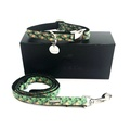 Collar and Lead Set - Alderley