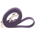 Amethyst and Silver Luxury Leather Lead